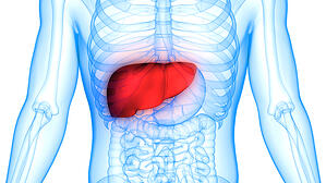 5 Ways to Cultivate Your Liver Energy